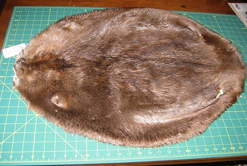 db5274d91d9 Beaver is a wonderful fur for many purposes. However
